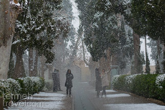 Fin Garden, Kashan, Iran. Heavy snowfall covering the tall trees and buildings.