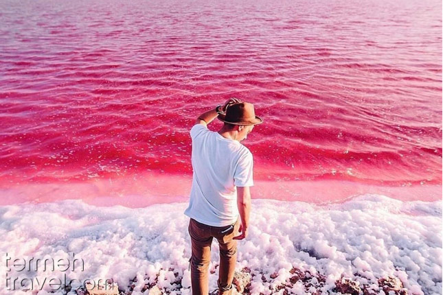 The Pink Lake in Shiraz- Termeh Travel