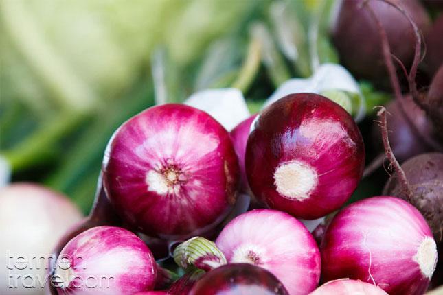 Violet onions - Termeh Travel