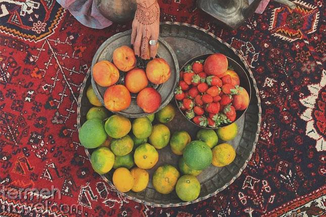 Qashqai Rug- Termeh Travel