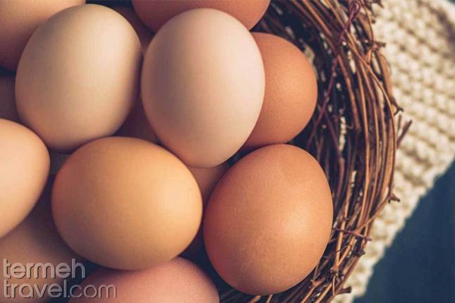 eggs- Termeh Travel