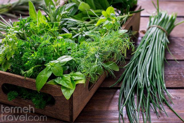Herbs in Ash Reshteh- Termeh Travel