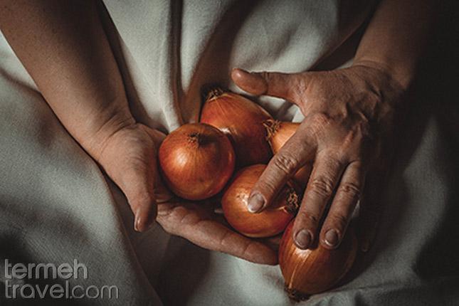 Kabab-Koobideh-Onion Termeh Travel